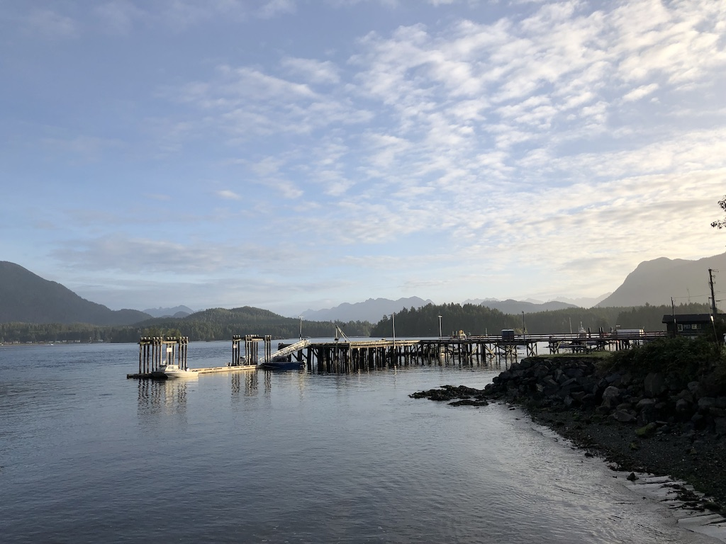 Morning view in Tofino