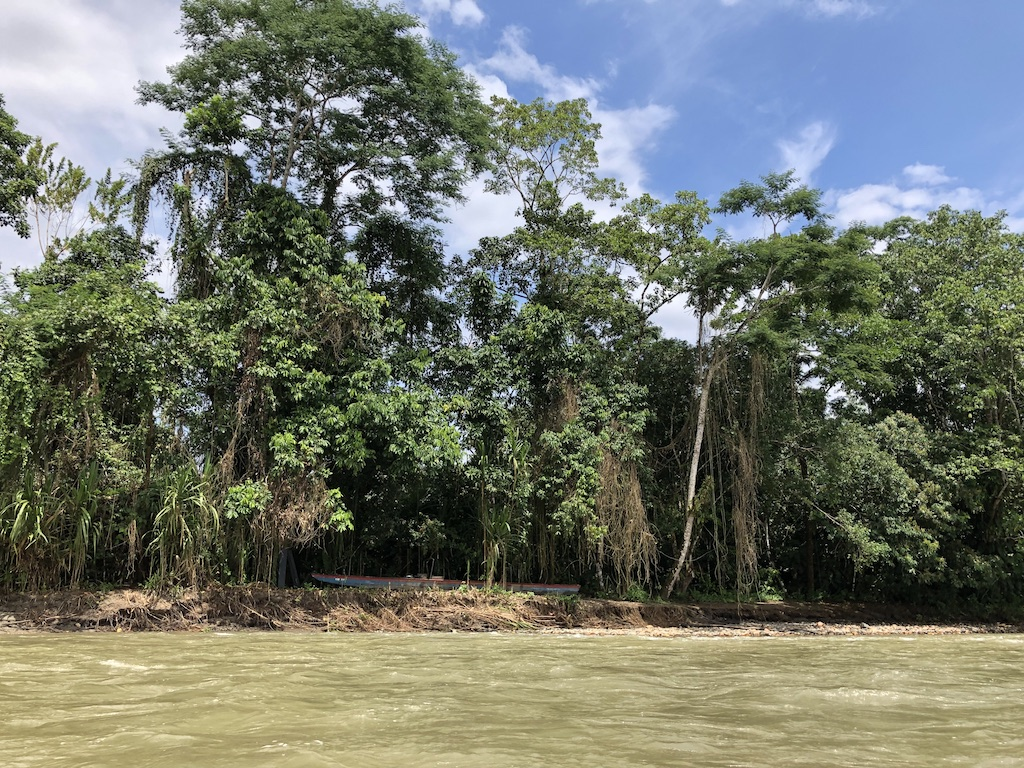 Boat in the shade of the Amazon jungle
