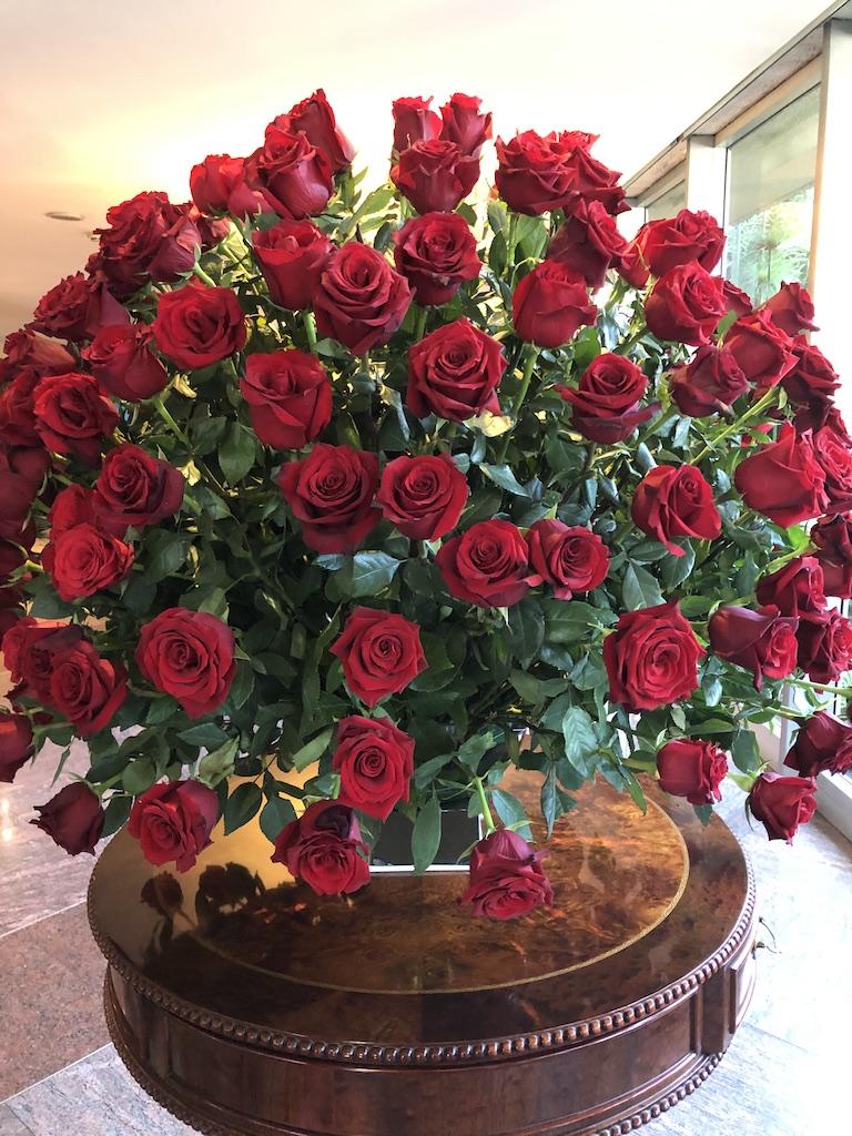 Red Ecuadorian roses.