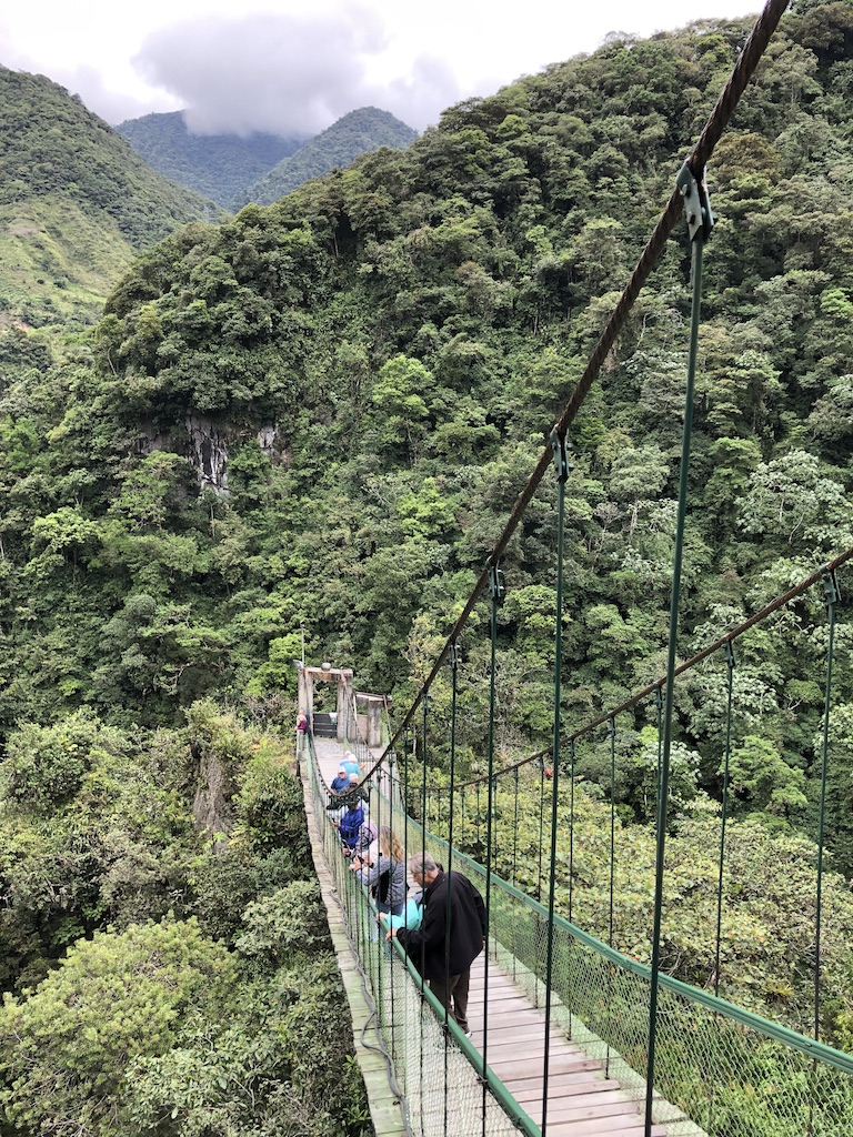 Suspension bridge at Devil's Cauldron waterfall