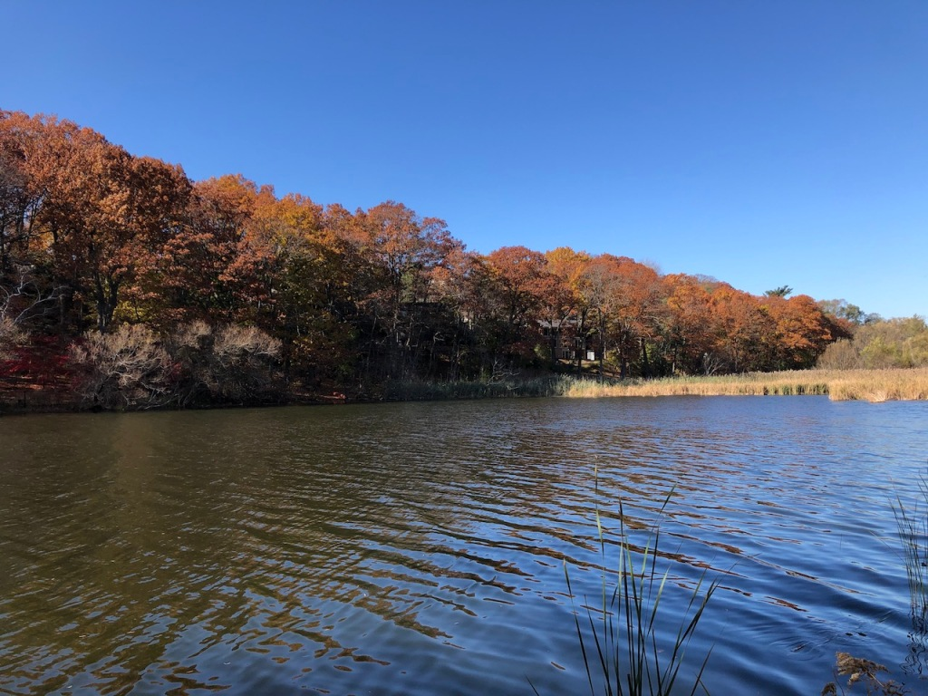Grenadier Pond in Autumn