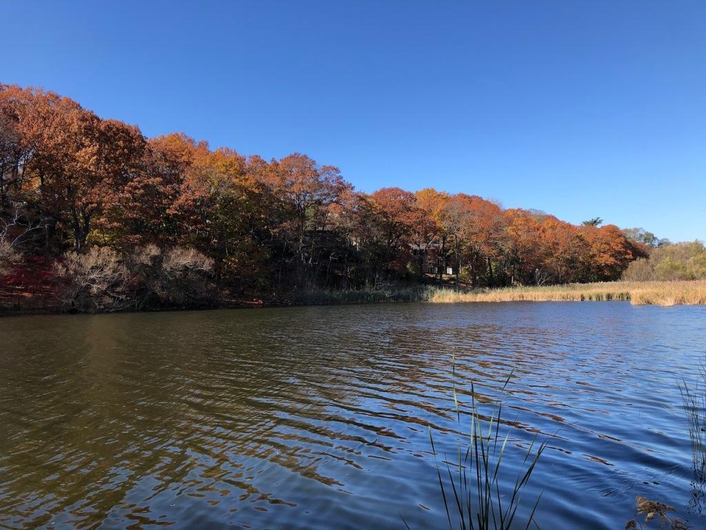 Grenadier Pond in Autumn