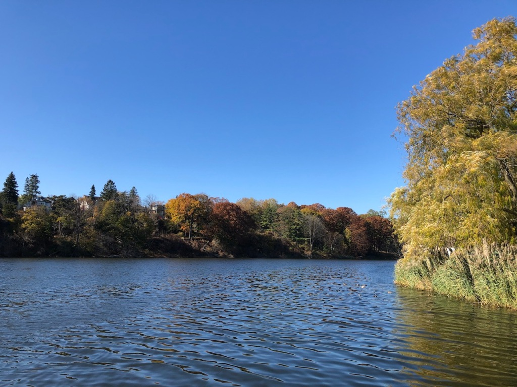 Views of Grenadier Pond