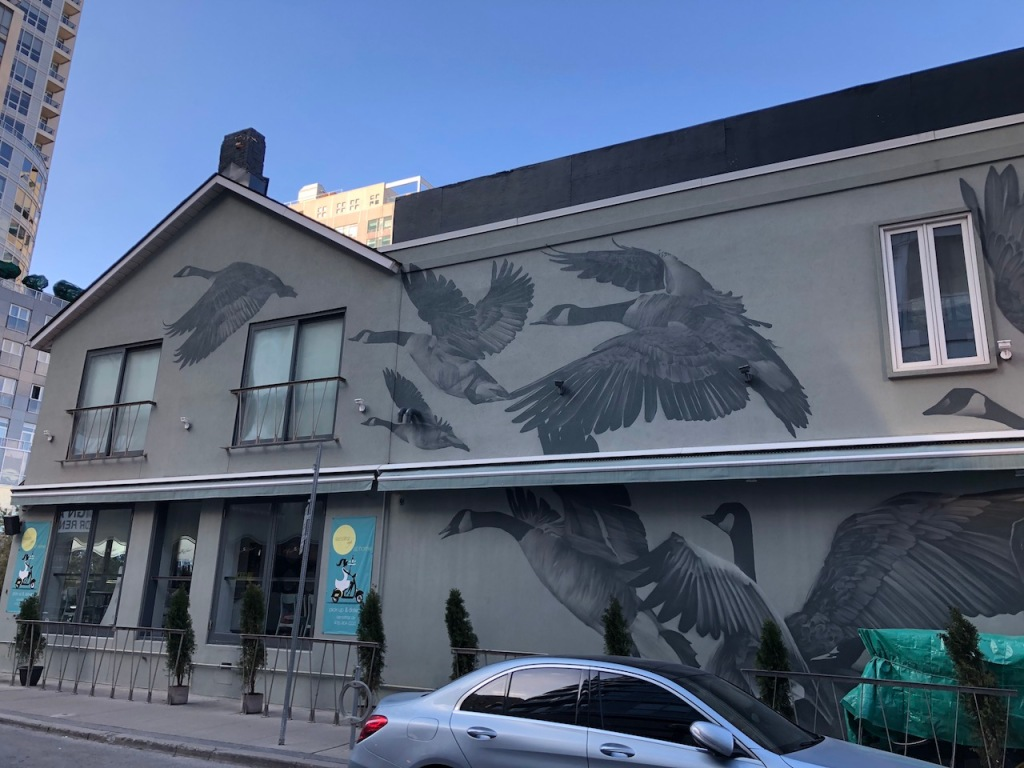 Canada Geese mural by local artist Bacon.