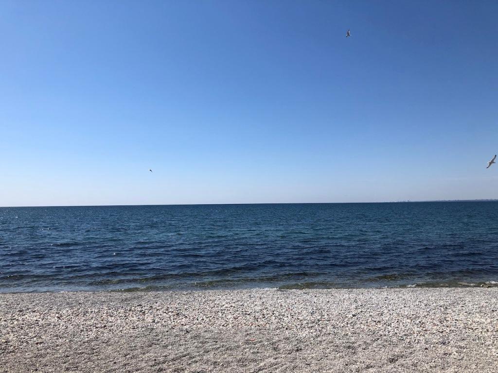 A lake beach.