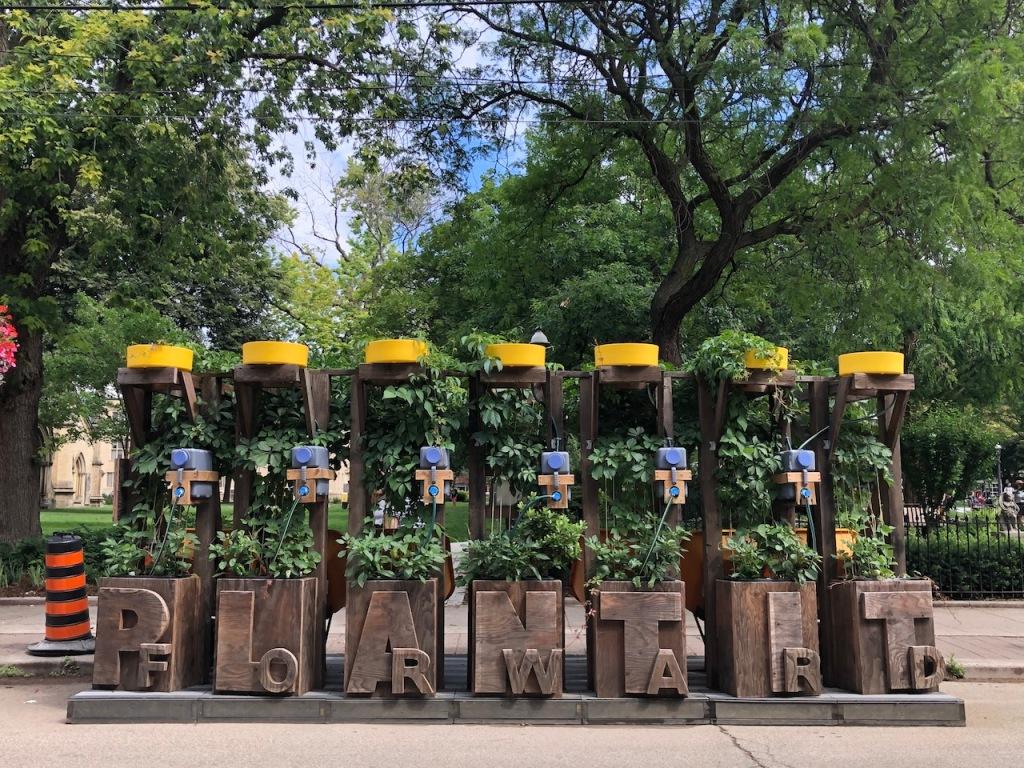 Plant It Forward sculpture/ urban garden.