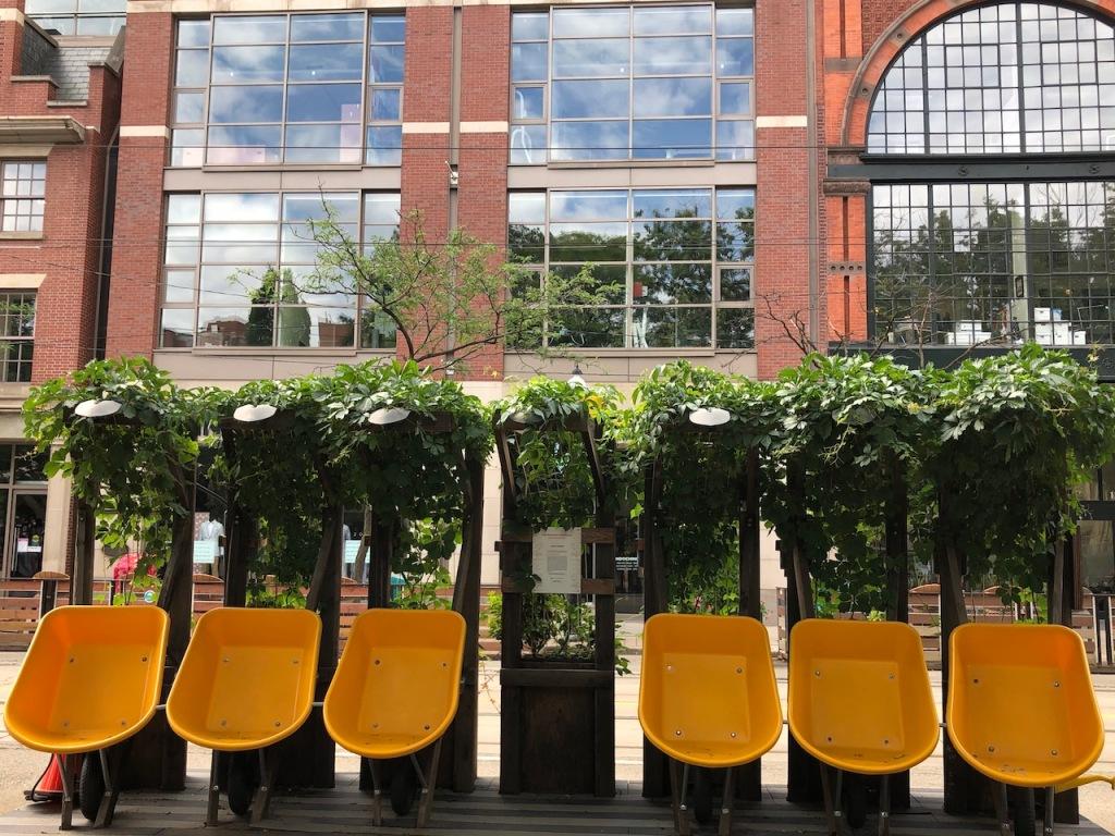 Plant It Forward urban garden with wheelbarrows.