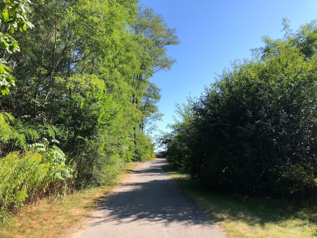 Paved path to the boardwalk.