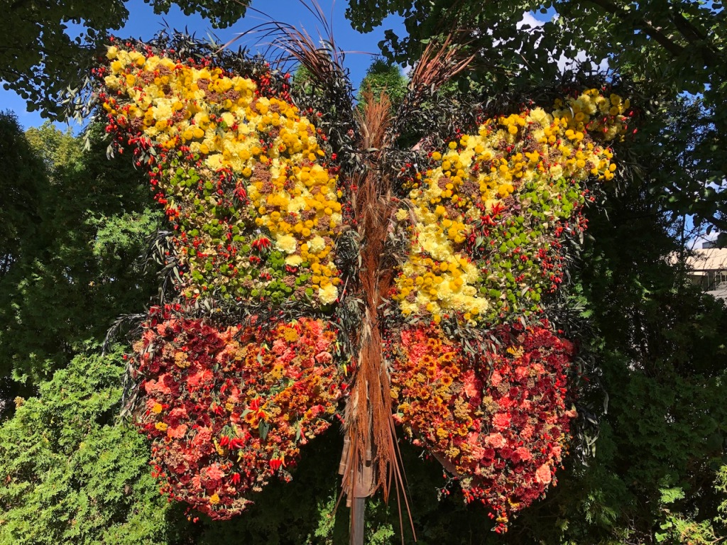Floral Butterfly.